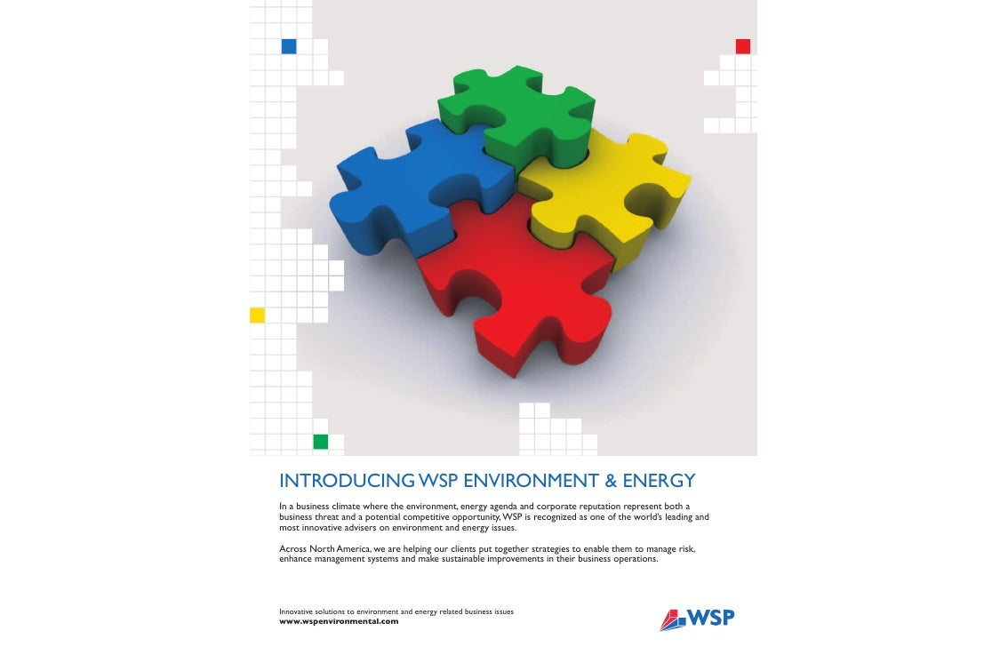 INTRODUCING WSP ENVIRONMENT & ENERGY In a business climate where the environment, energy agenda and corporate reputation r...