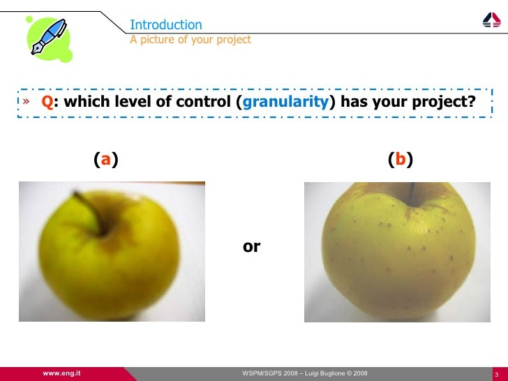 Introduction                      A picture of your project     » Q: which level of control (granularity) has your project...