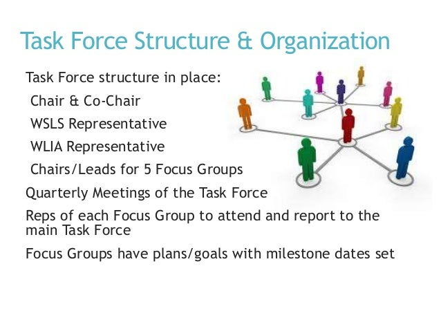 Task Force Structure & Organization Task Force structure in place: Chair & Co-Chair WSLS Representative WLIA Representativ...
