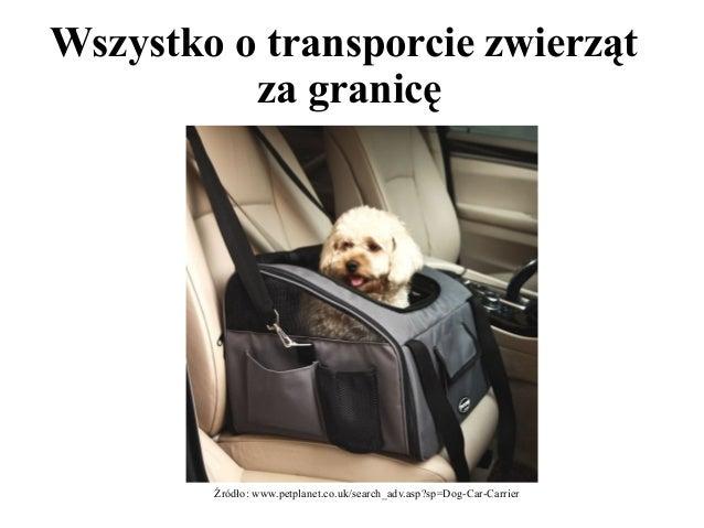 Wszystko o transporcie zwierząt  za granicę  Źródło: www.petplanet.co.uk/search_adv.asp?sp=Dog-Car-Carrier