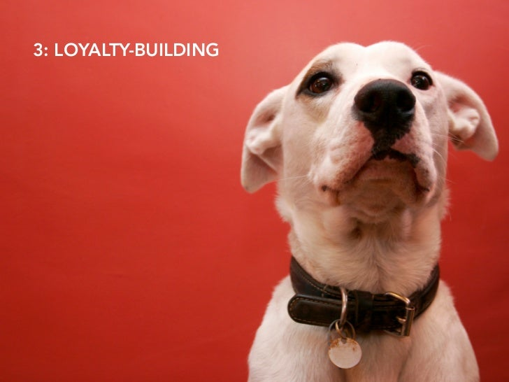 3: LOYALTY-BUILDING