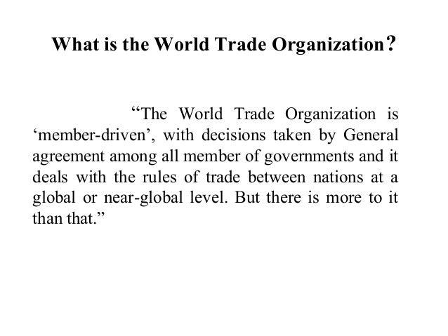 World trade organization essay thesis