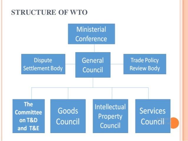 Principles of trading system wto