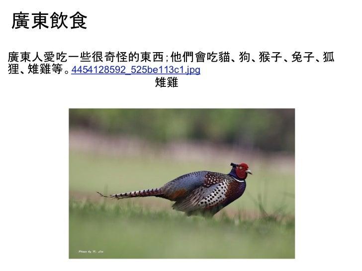 廣東飲食廣東人愛吃一些很奇怪的東西;他們會吃貓、狗、猴子、兔子、狐狸、雉雞等。4454128592_525be113c1.jpg                     雉雞