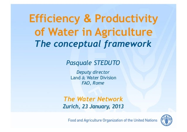 Efficiency & Productivity of Water in Agriculture The conceptual framework       Pasquale STEDUTO          Deputy director...