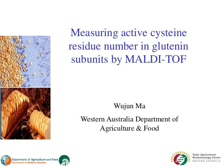 Measuring active cysteineresidue number in glutenin subunits by MALDI-TOF            Wujun Ma  Western Australia Departmen...