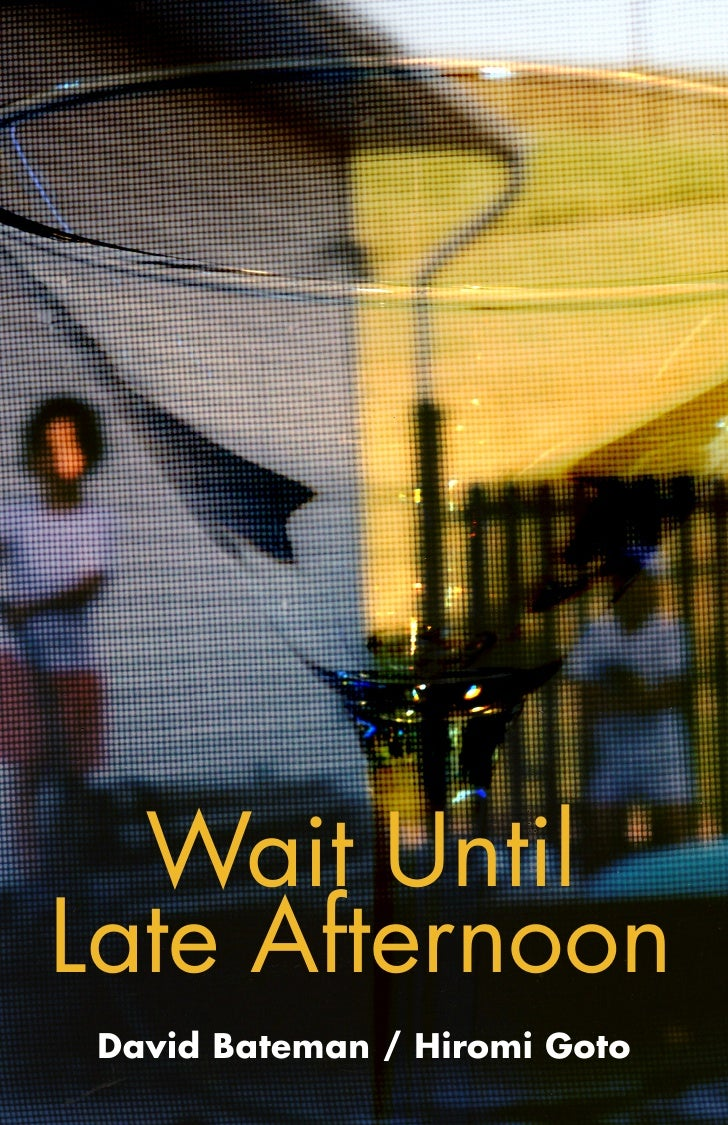 Wait Until Late Afternoon