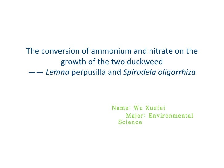 The conversion of ammonium and nitrate on the growth of the two duckweed ——  Lemna  perpusilla   and  Spirodela oligorrhiz...