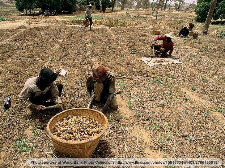 Photo courtesy of World Bank Photo Collections http://www.flickr.com/photos/10816734@N03/2766433018/