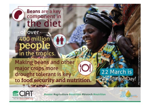 World Water Day 2014 - Drought tolerant beans for food security and nutrition