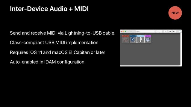 Inter-Device Audio + MIDI Send and receive MIDI via Lightning-to-USB cable Class-compliant USB MIDI implementation Require...