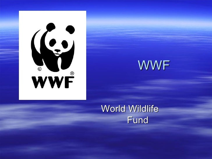 WWF World  Wildlife   Fund