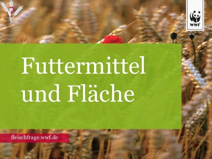 Futtermittel und Fläche fleischfrage.wwf.de