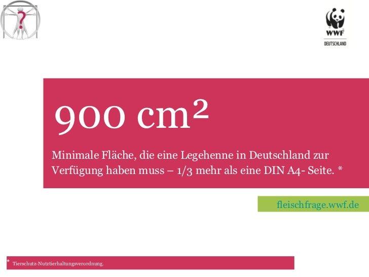 900 cm² TET Minimale Fläche, die eine Legehenne in Deutschland zur Verfügung haben muss – 1/3 mehr als eine DIN A4- Seite....