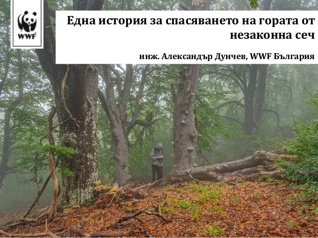 Една история за спасяването на гората от незаконна сеч инж. Александър Дунчев, WWF България