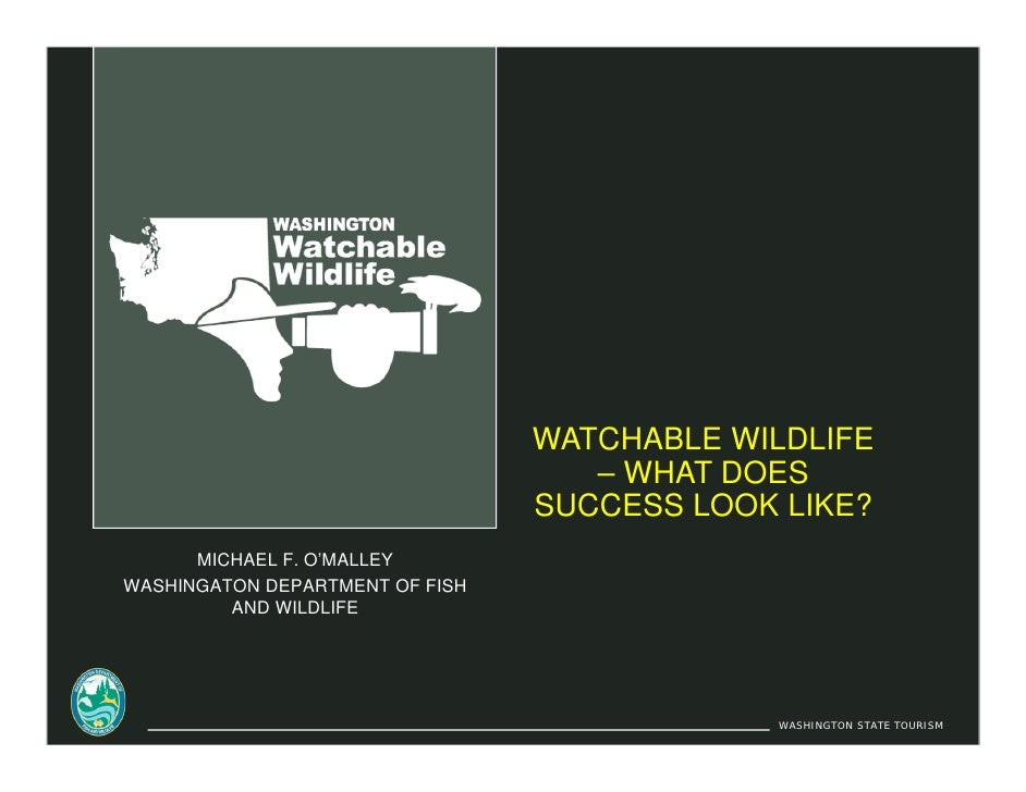 WATCHABLE WILDLIFE                                     – WHAT DOES                                  SUCCESS LOOK LIKE?    ...