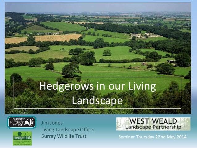 Hedgerows in our Living Landscape Jim Jones Living Landscape Officer Surrey Wildlife Trust Seminar Thursday 22nd May 2014