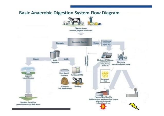 BasicCombinedHeat&PowerBiogasEngineGen‐setDiagram HotReturnWater ColdSupplyWater Pump ExhaustStack CO2Recove...