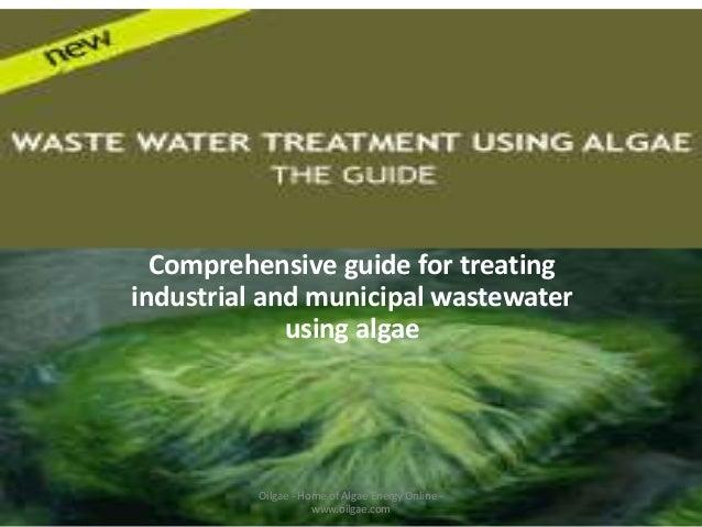 Logo  Comprehensive guide for treating industrial and municipal wastewater using algae Oilgae's  Oilgae - Home of Algae En...