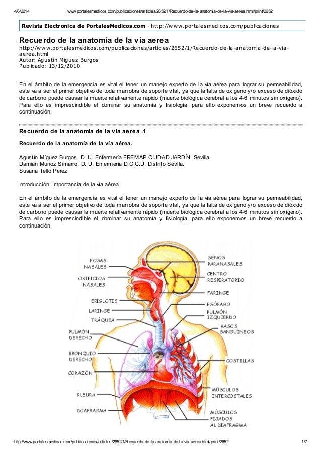 Www.portalesmedicos.com publicaciones articles_2652_1_recuerdo-de-la-…