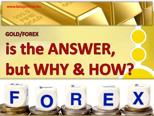 Apakah bisnis forex itu halal