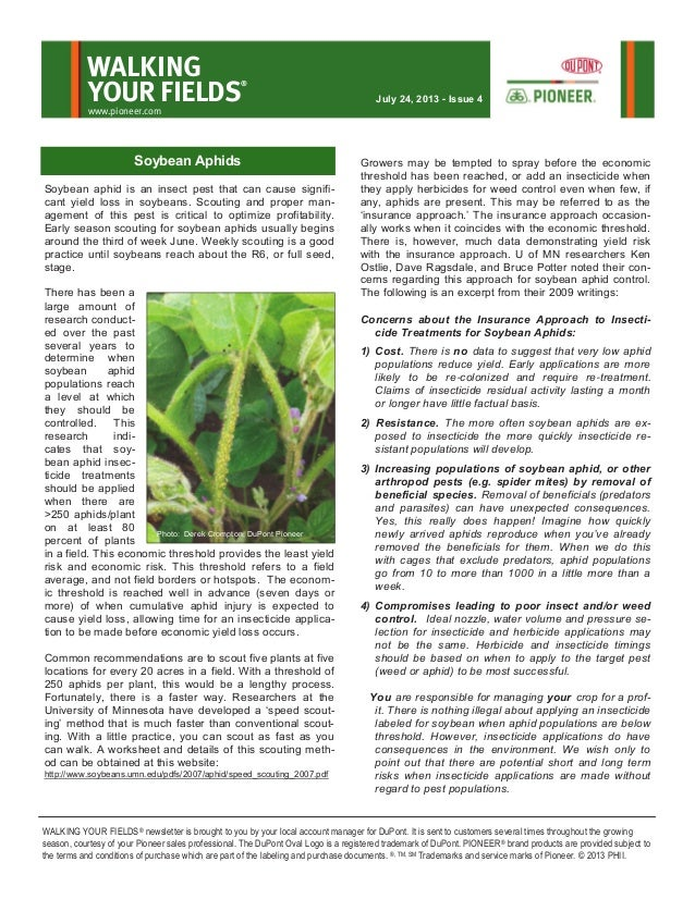 Soybean aphid is an insect pest that can cause signifi- cant yield loss in soybeans. Scouting and proper man- agement of t...
