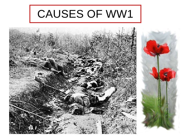 cause of ww1 Possibly the single most pondered question in history - what caused the unbound, senseless slaughter that was the first world war it wasn't, like in world war two, a case of a single.