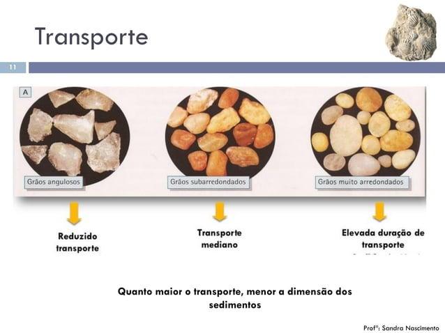 Transporte 11 Quanto maior o transporte, menor a dimensão dos sedimentos Profª: Sandra Nascimento