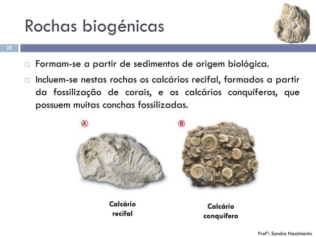 Rochas biogénicas 22  Formam-se a partir de sedimentos de origem biológica.  Incluem-se nestas rochas os calcários recif...