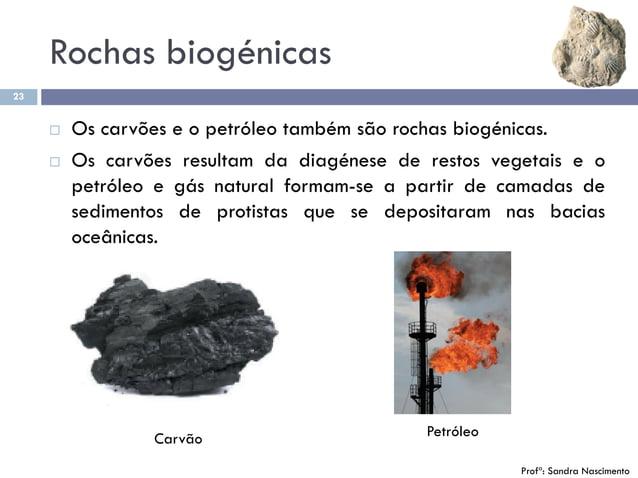 Rochas biogénicas 23  Os carvões e o petróleo também são rochas biogénicas.  Os carvões resultam da diagénese de restos ...