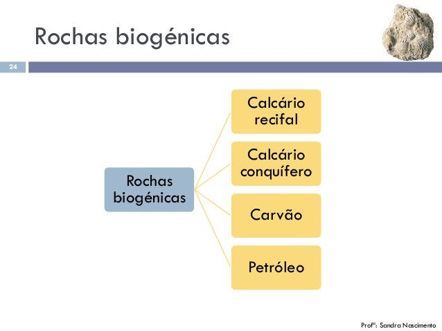 Rochas biogénicas 24 Rochas biogénicas Calcário recifal Calcário conquífero Carvão Petróleo Profª: Sandra Nascimento