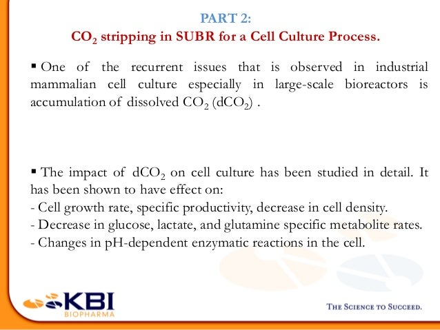 Establishing Improved O2 Supply Lower Dco2 Built Up And