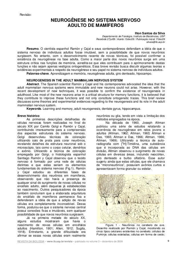 REVISTA DA BIOLOGIA – www.ib.usp.br/revista – publicado no volume 3 – dezembro de 2009 9 NEUROGÊNESE NO SISTEMA NERVOSO AD...