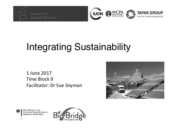 Integrating Sustainability 1	June	2017	 Time	Block	9	 Facilitator:	Dr	Sue	Snyman
