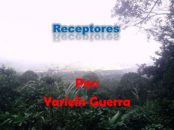 Por:Yarielis Guerra