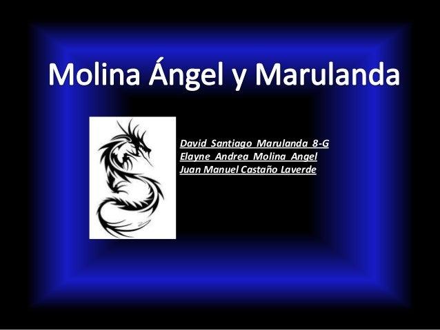 David Santiago Marulanda 8-GElayne Andrea Molina AngelJuan Manuel Castaño Laverde