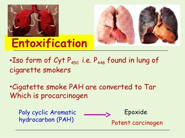Xenobiotics Biotransformations Detoxication