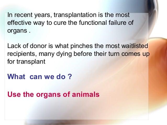 Xenorenotransoplantation 1 Slide 2