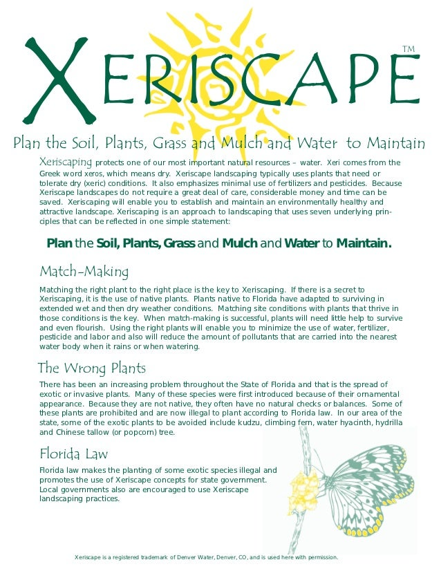 Xeriscape Guide Plan The Soil Plants Grass And Mulch Northwest F