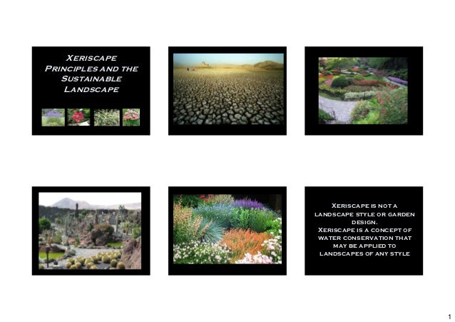 XeriscapePrinciples and the   Sustainable    Landscape                         Xeriscape is not a                     land...