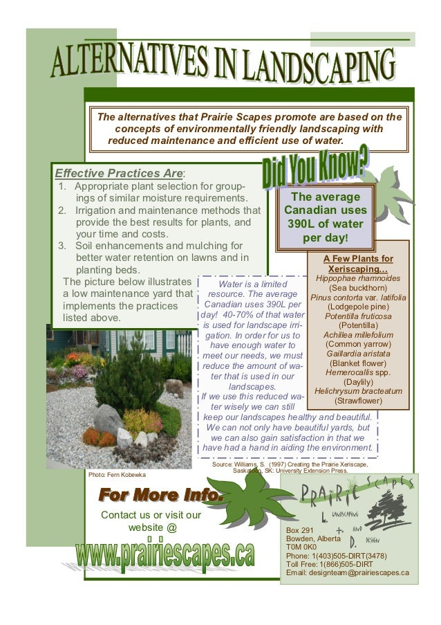 The alternatives that Prairie Scapes promote are based on the             concepts of environmentally friendly landscaping...
