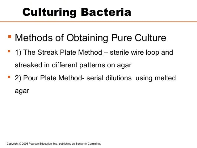 Micro] growth and culturing of bacteria