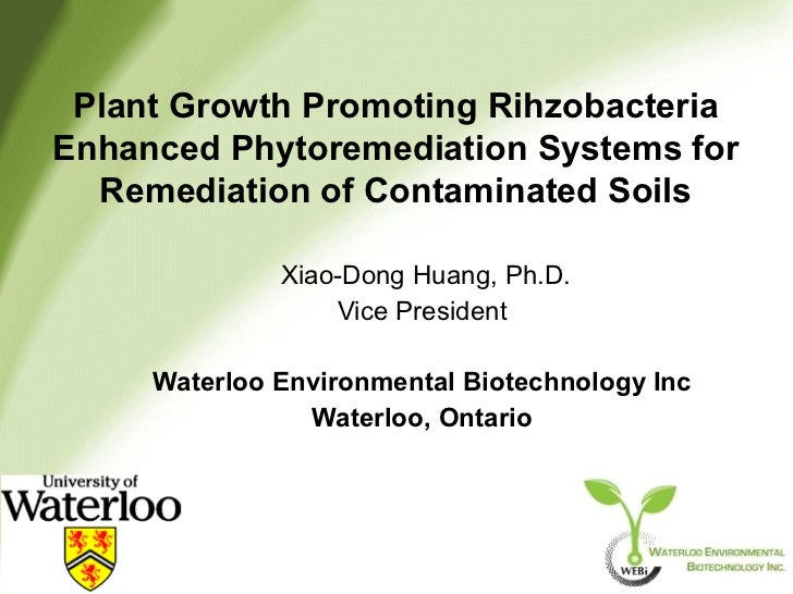 Plant Growth Promoting RihzobacteriaEnhanced Phytoremediation Systems for  Remediation of Contaminated Soils              ...