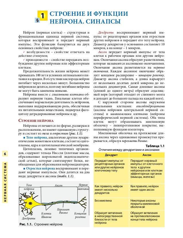 Учебник по анатомии человека для 11 класса