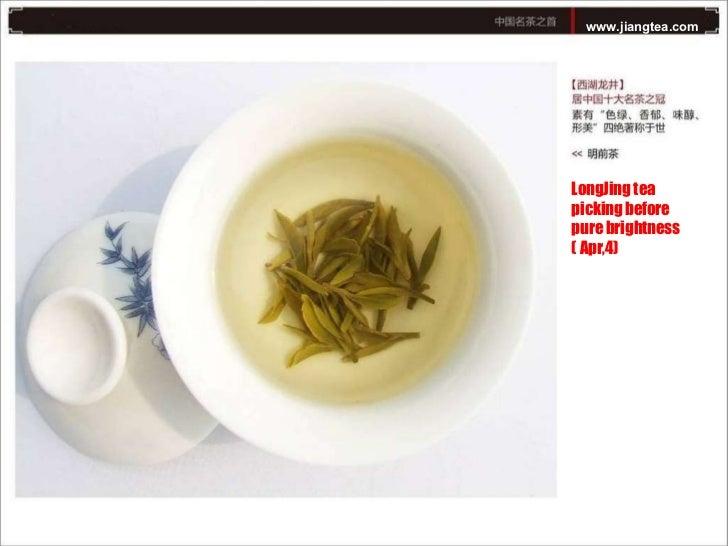 www.jiangtea.com LongJing tea picking before pure brightness ( Apr,4)