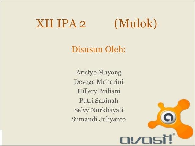 XII IPA 2           (Mulok)      Disusun Oleh:        Aristyo Mayong       Devega Maharini        Hillery Briliani        ...