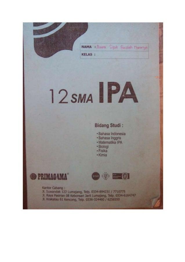 Xii sma ipa