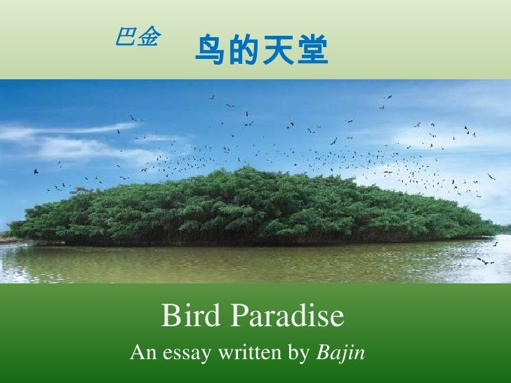 巴金       鸟的天堂     Bird ParadiseAn essay written by Bajin