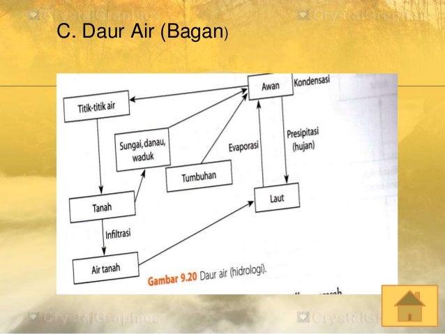Ekosistem c daur air bagan ccuart Image collections