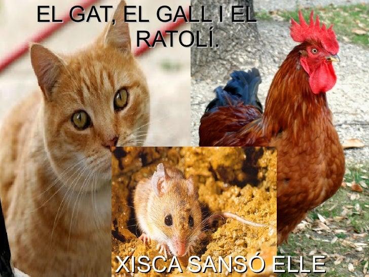 EL GAT, EL GALL I EL         RATOLÍ.       XISCA SANSÓ ELLE